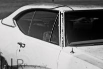 cars_web